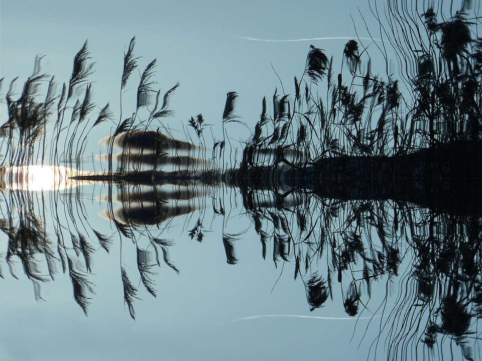 reflection-water