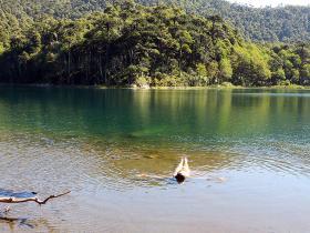 Water Swim