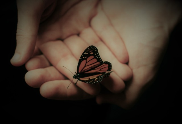 hands-butterfly-2